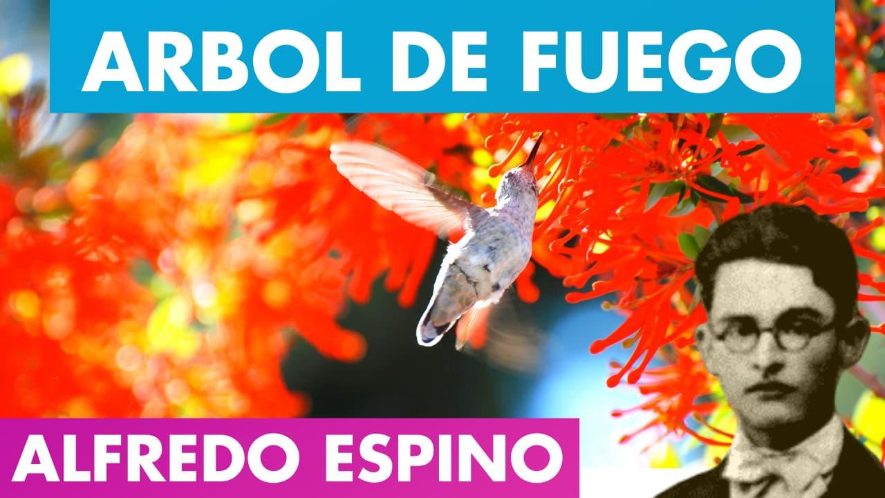 En este momento estás viendo ARBOL DE FUEGO ALFREDO ESPINO🌳🔥 | Poema Árbol de Fuego de Alfredo Espino | Valentina Zoe Poesía