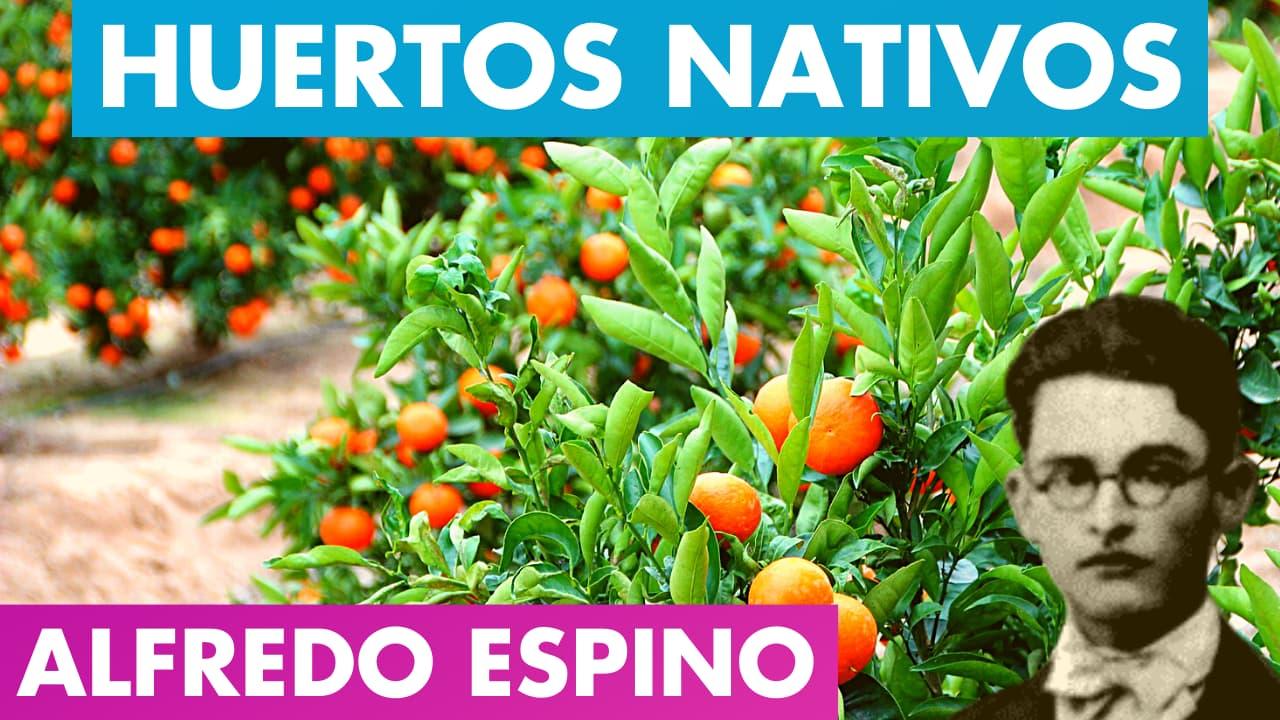 En este momento estás viendo HUERTOS NATIVOS ALFREDO ESPINO 🌿🌱 | Poema Huertos Nativos de Alfredo Espino 💚🎋 | Valentina Zoe