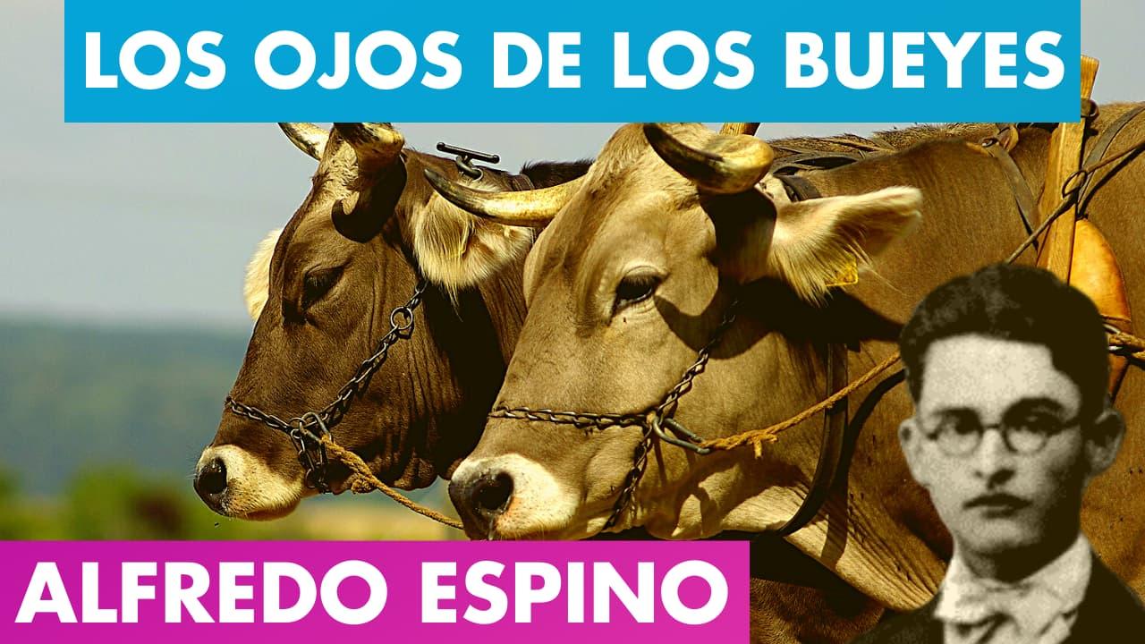 En este momento estás viendo LOS OJOS DE LOS BUEYES ALFREDO ESPINO 🐂👀 | Poema Los Ojos de Los Bueyes Alfredo Espino Valentina Zoe